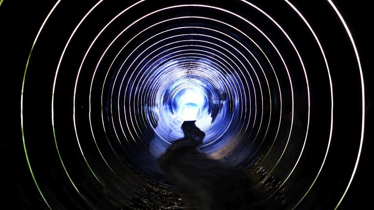 blaue Röhrenrutsche :: Tube Slide | Badegärten Eibenstock